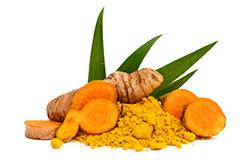 zenzero radice con foglie ee polvere arancione messa a lato