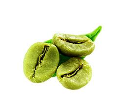 tre chicchi di caffè verde con una foglia verde su sfondo bianco
