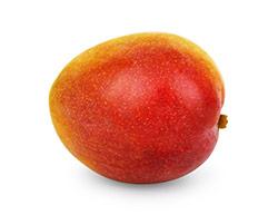 frutto di mango africano maturo arancione e marrone su sfondo bianco