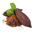 cacao aperto e chiuso e polvere di cacao su sfondo bianco