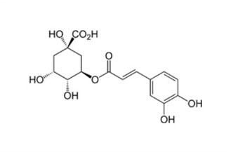grafica acido cloregenico chimica disegno formula su sfondo bianco