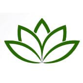 Assorbendo il verde del fiore su uno sfondo bianco che rappresenta la calma