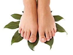 piedi nudi di donna che calpestano foglie verdi su sfondo bianco