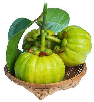 3 frutti verdi garcinia cambogia a forma di zucca