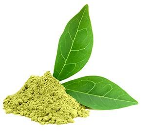 polvere verde di caffè verde con foglia verde accanto