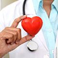 Supporta il cuore e i livelli di colesterolo