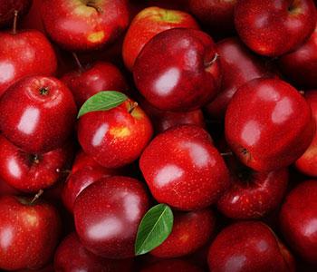 mucchio di ciliegie rosse con foglie verdi di ciliegio