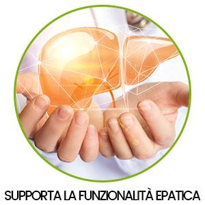 proprietà supporto funzione epatica benefici della curcumina principio attivo della curcuma per salute