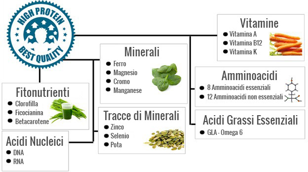 grafica spirulina e quantità di nutrienti maggiori rispetto ad altri superfood