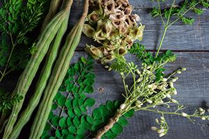 polvere di moringa verde in ciotola marrone su tavolo marrone