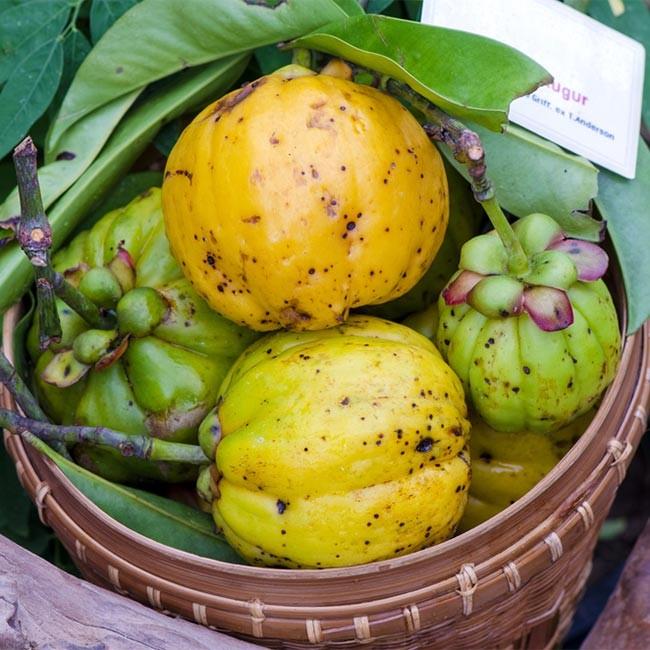 Posso unire Garcinia Cambogia a altri Superfood?