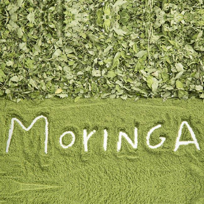 Moringa: proprietà benefiche, terapeutiche e nutrizionali