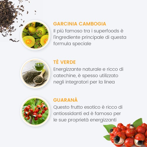 /images/product/package/garcinia-cambogia-plus-4-it-new.jpg