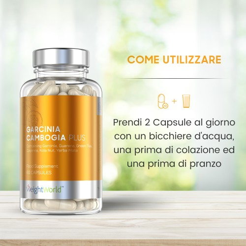 /images/product/package/garcinia-cambogia-plus-7-it-new.jpg