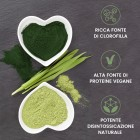 /images/product/thumb/biochlorella-5-it-new.jpg