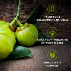 /images/product/thumb/garcinia-cambogia-pure-4-it-new.jpg