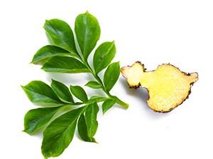 radice di zenzero gialla tagliata a metà accanto a foglie verdi su sfondo bianco