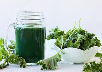 foglie di alga spirulina e polvere cosa serve benefici e grafica