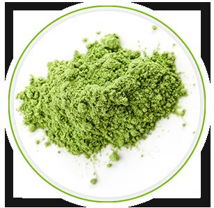 infgrafica benefici della polvere magica Superfood Green Magic proto-col