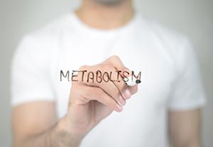 scritta metabolismo su lavagna  da parte di un uomo dall'altra parte